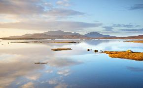 South Uist loch bee