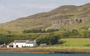 Canna with cottage