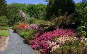 Beautiful gardens at Achamore on Gigha