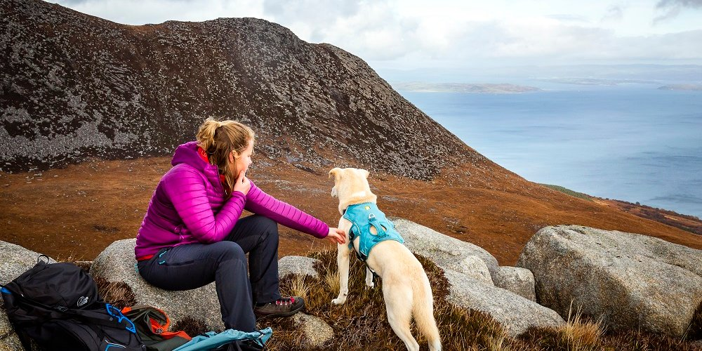 woman with dog up Goat Fell, Isle of Arran
